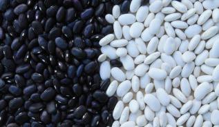 beans-799943_1920 (1)