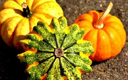 pumpkins-2204643_1920 (1)
