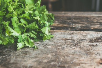 salad-2850199_1920 (1)
