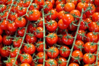tomatoes-2966492_1920 (1)